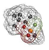 Soman nerve agent, molecular model. Soman is a chemical weapon,