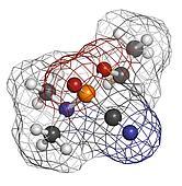 Tabun nerve agent, molecular model. Tabun is a chemical weapon,