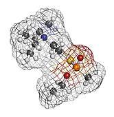 VX nerve agent, molecular model. VX is a chemical weapon, classi