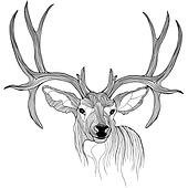 Deer head vector animal illustratio