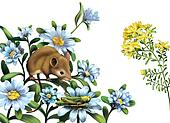 Mouse, grasshoper blue meadow flowers