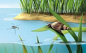 River scene: snail on grass, lake water