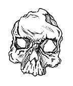 Skull Face 1