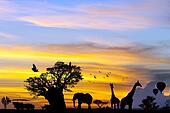 African safari scene at sunset.
