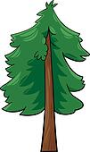 cartoon illustration of conifer tree