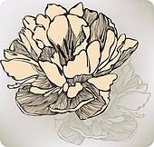 Tulip flower decorative, hand-drawing. Vector illustration.