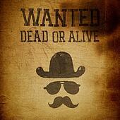 """Vintage """"Wanted..."""" poster, grunge illustration"""