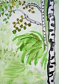 Birches and a grass