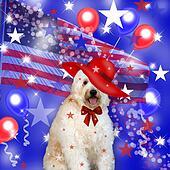 Patriotic Dog (illustration)