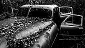 Black and white image of a rusty, abandoned car