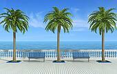 Tropical promenade