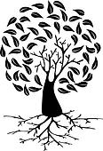 Young Tree with roots silhouette