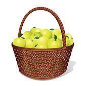 Juicy Sweet Apples in Basket