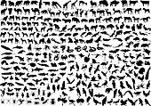 300 animal silhouettes