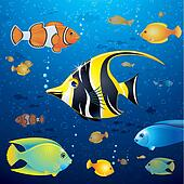 Underwater Background with Colorful Tropical Fish