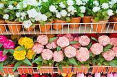 Paper flower in flower pot