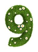 Natural grass number 9
