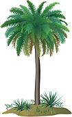 Palm tree and plants