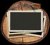 Vintage Photo Frames on Section of Tree Trunk