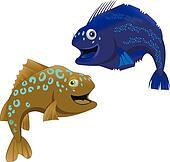 halibut rag fish