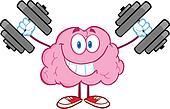 BrainTraining With Dumbbells