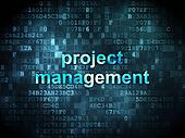 Business concept: Project Management on digital background