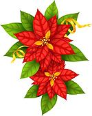 Christmas Star flowers poinsettia with gold ribbon