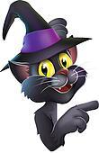 Black cat in witch hat