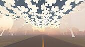Road through white paper trees