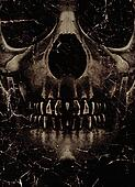 Skull Poster Background