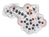 Apremilast investigational psoriasis drug, chemical structure.