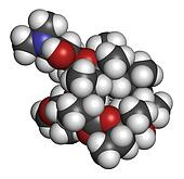 Clarithromycin antibiotic drug (macrolide class), chemical structure. Atoms are represented as spheres with conventional color coding: hydrogen (white), carbon (grey), nitrogen (blue), oxygen (red).