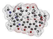 rifampicin (rifampin, rifamycin class) tuberculosis antibiotic,