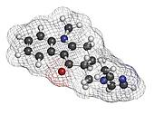 Ondansetron nausea and vomiting treatment drug, chemical structure. Atoms are represented as spheres with conventional color coding: hydrogen (white), carbon (grey), oxygen (red), nitrogen (blue)