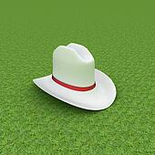 White hat with a red ribbon on a green grass background