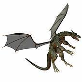 Gray Brown Dragon