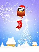 Owl with Christmas sock