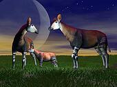 Okapi family - 3D render