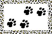 leopard footprints