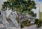 great magnolia tree and a stairs with chimera in Livadia watercolor