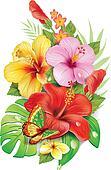Bouquet of tropical flowersv