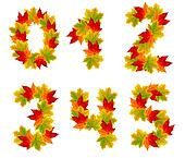 numbers  made from autumn leaves, isolated on white