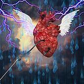 Heart flight