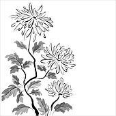 Chinese chrysanthemum. Ink painting