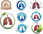 Lungs set