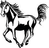 horse runs
