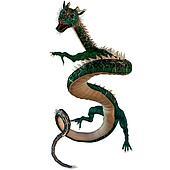 Green Jewel Dragon