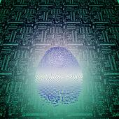 Machine Fingerprint
