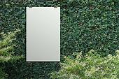 blank paper card 3d  Green leaves wall background