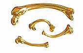 Set of gold bone
